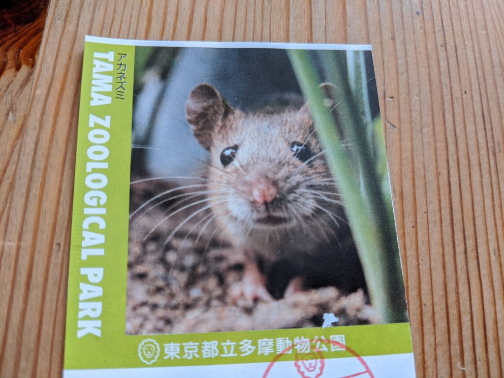 多摩動物公園