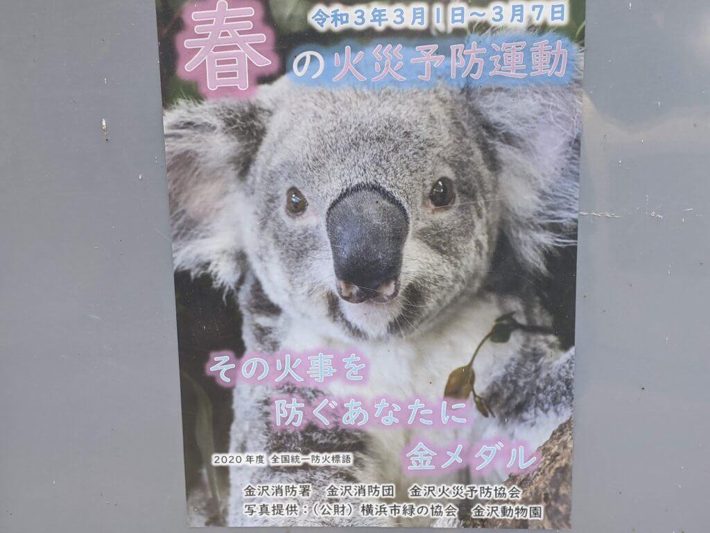 横浜市立金沢動物園_20210302
